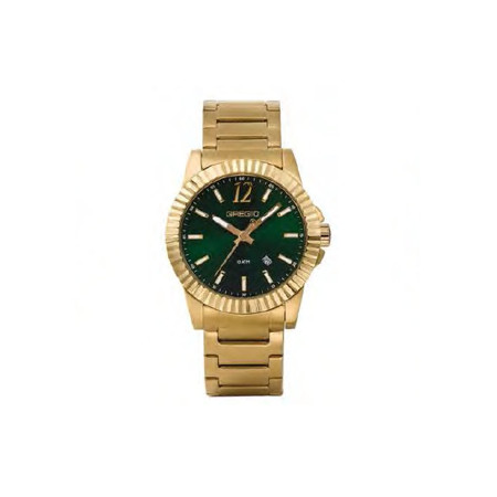 Gregio Yellow Gold & Green Stainless Steel Watch with Quartz Movement